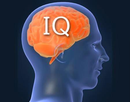 Waspada!!! Ini Yang Bisa Menyebabkan IQ Merosot