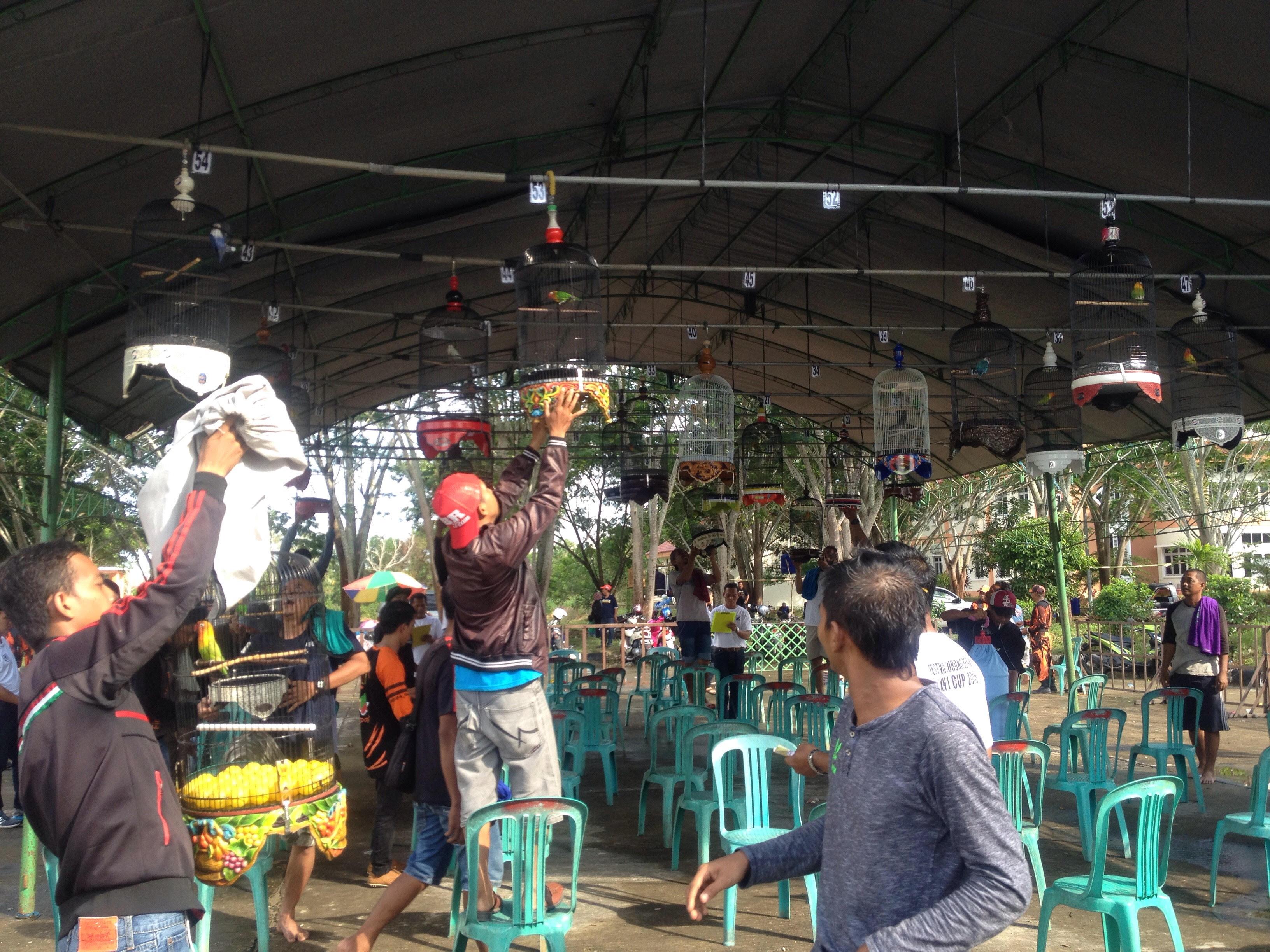 Peserta Dari Berbagai Daerah Ramaikan Festival Burung Berkicau PPU