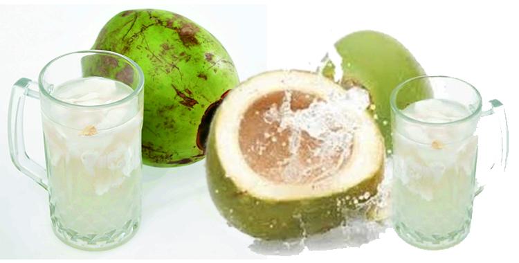 Khasiat Minum Air Kelapa Selama 15 Hari Bagi Kesehatan