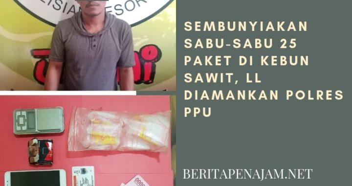 Sembunyiakan Sabu-sabu 25 paket di Kebun Sawit, LL diamankan Polres PPU